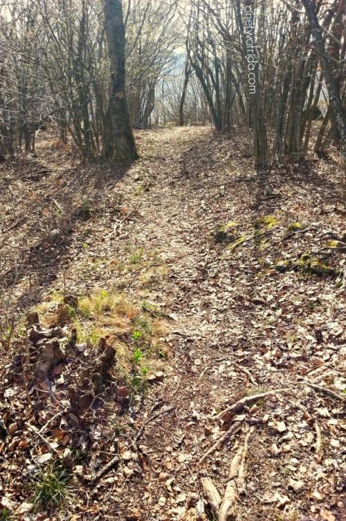 sentiero e trekking