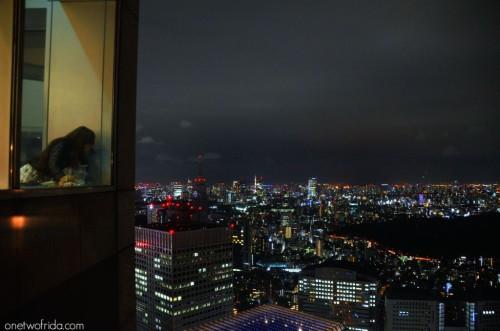 TOKYO – VISTA DAL TOKYO METROPOLITAN GOVERNMENT BUILDING