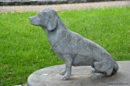 cagnolino Trivero