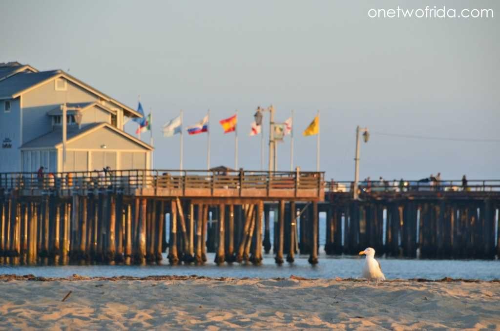 organizzare-viaggio-california